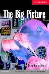 The Big Picture Level 1 by Sue Leather