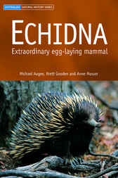 Echidna by Michael Augee