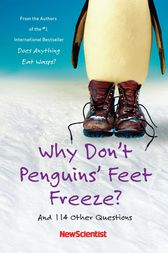 Why Don't Penguins' Feet Freeze? by New Scientist
