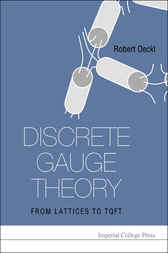 Discrete Gauge Theory by Robert Oeckl