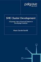 SME Cluster Development by Mario Davide Parrilli