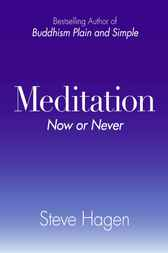 Meditation Now or Never by Steve Hagen