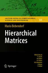 Hierarchical Matrices by Mario Bebendorf