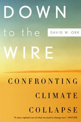 Down to the Wire by David W. Orr