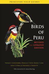 Birds of Peru