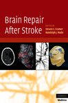 Brain Repair After Stroke