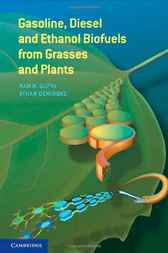Gasoline, Diesel, and Ethanol Biofuels from Grasses and Plants by Ram B. Gupta