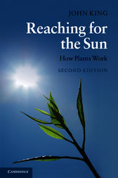 Reaching for the Sun by John King