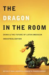 The Dragon in the Room by Kevin Gallagher