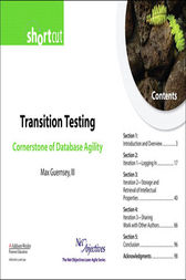 Transition Testing by Max Guernsey