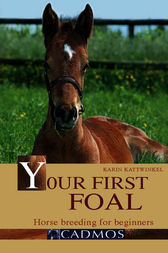 Your First Foal by Karin Kattwinkel