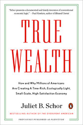 True Wealth by Juliet B. Schor