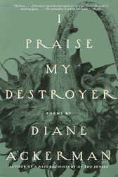 I Praise My Destroyer by Diane Ackerman