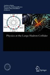 Physics at the Large Hadron Collider by Amitava Datta