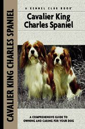 Cavalier King Charles Spaniel by Juliette Cunliffe