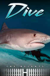 Dive by Saddleback Educational Publishing