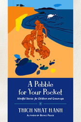 A Pebble for Your Pocket