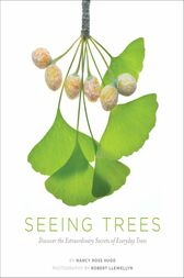 Seeing Trees by Nancy Ross Hugo