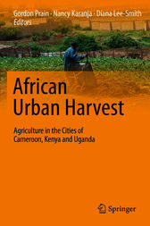 African Urban Harvest by unknown