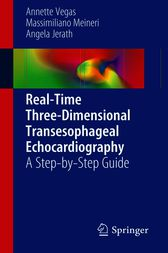 Real-Time Three-Dimensional Transesophageal Echocardiography by Annette Vegas