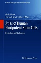 Atlas of Human Pluripotent Stem Cells by Michal Amit