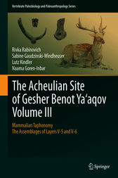 The Acheulian Site of Gesher Benot Ya'aqov Volume III by Rivka Rabinovich