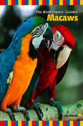 Macaws by Julie Mancini