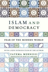 an analysis of the book of mernissi Free essay: dreams of trespass tales of a harem girlhood fatima mernissi's dreams of trespass tales of a harem girlhood is a book, which gives the reader an.