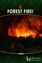 Forest Fire! by Anita Ganeri
