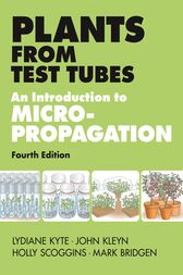 Plants from Test Tubes by Holly Scoggins