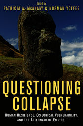 Questioning Collapse by Patricia A. McAnany