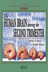 The Human Brain During the Second Trimester by Shirley A. Bayer