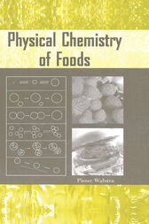 Physical Chemistry of Foods by Pieter Walstra