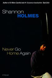 Never Go Home Again by Shannon Holmes