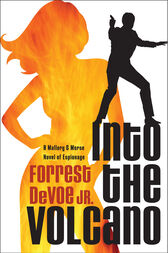 Into the Volcano by Forrest DeVoe