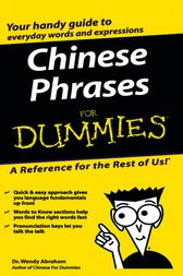 Chinese Phrases For Dummies by Wendy Abraham