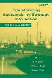 Transforming Sustainability Strategy into Action by Beth Beloff