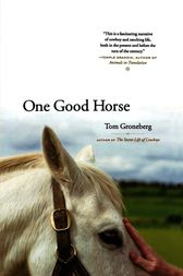 One Good Horse by Tom Groneberg