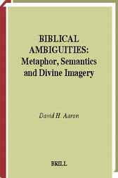 Biblical ambiguities by D.H. Aaron