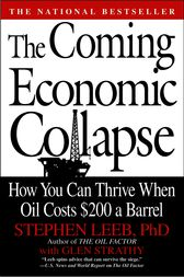 The Coming Economic Collapse by Stephen Leeb