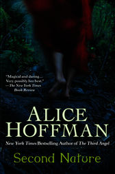 the continuation of stephens adult life in alice hoffmans second nature In the skit, created in the same year harmon's show community debuted on nbc, harmon makes the deadpan, joking assertion that he has shot a pilot for showtime.