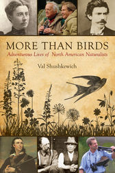 More Than Birds by Val Shushkewich