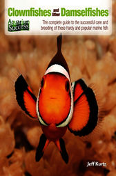 Clownfishes and Other Damselfishes by Jeff Kurtz