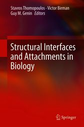 Structural Interfaces and Attachments in Biology by Stavros Thomopoulos