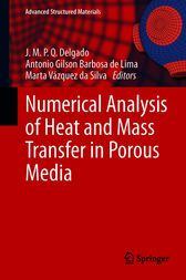 Numerical Analysis of Heat and Mass Transfer in Porous Media by J.M.P.Q. Delgado