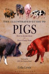 The Illustrated Guide to Pigs by Celia Lewis