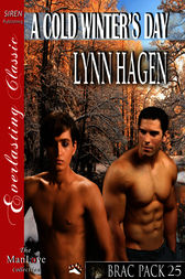 A Cold Winter's Day (Siren Publishing Everlasting Classic ManLove)