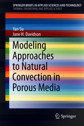 Modeling Approaches to Natural Convection in Porous Media by Yan Su