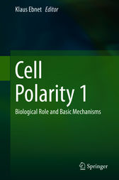 Cell Polarity 1 by Klaus Ebnet