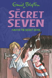 Secret Seven: Fun For The Secret Seven by Enid Blyton